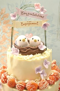 Cherie Kelly's Love Birds Strawberry and Chocolate Mousse Engagement Cake