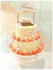 Love Birds Strawberry and Chocolate Mousse Wedding Engagement Cake Cherie Kelly London